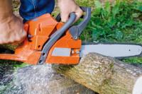 Kettensäge durchsägt Baum
